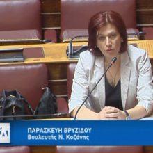 Ομιλία της Π. Βρυζίδου στη Διαρκή Επιτροπή Κοινωνικών Υποθέσεων της Βουλής (Βίντεο)