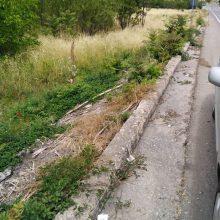 "kozan.gr: Άμεση η παρέμβαση του Δήμου Σερβίων για την αφαίρεση επικίνδυνων σιδερένιων ""λεπίδων"" στο τσιμεντένιο διαχωριστικό στην άκρη του δρόμου, στην είσοδο των Σερβίων"