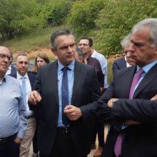 "kozan.gr: Ο Υπουργός Αγροτικής Ανάπτυξης & Τροφίμων κ. Μάκης Βορίδης μετά τη μεσημεριανή του επίσκεψη στο Πρότυπο Κέντρο Κτηνοτροφίας και εκπαίδευσης Βλάστης: ""Θα δούμε τις προοπτικές για την ανάπτυξη μιας σχολής κτηνοτροφικού χαρακτήρα στην περιοχή αλλά και την περαιτέρω ανάπτυξη των εργαστηριών – του Κέντρου – για τη γεννητική βελτίωση – Είμαστε σε καλό δρόμο"" (Βίντεο)"