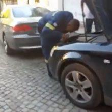 """Φίδι έκανε """"βόλτες"""" στο κέντρο της πόλης των Γρεβενών (Βίντεο)"""