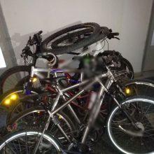 Εξιχνίαση κλοπών ποδηλάτων στα Γρεβενά (Φωτογραφία)