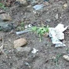 Εορδαία: Ασυνείδητοι έσπειραν φόλες – Ομαδική θανάτωση ζώων στην Ασβεστόπετρα