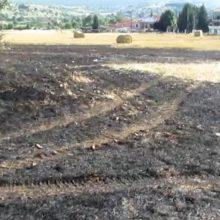 """kozan.gr: Φωτιά, από άγνωστη αιτία, σε χωράφι στο Βατερό Κοζάνης – Εικάζεται, από κατοίκους, ότι προκλήθηκε από σπινθήρα κολόνας της ΔΕΔΔΗΕ Α.Ε. – Τι λέει η Μαρίνα Τσακμάκη ιδιοκτήτρια του ποιμνιοστασίου που – βρίσκεται λίγα μέτρα πιο πάνω – και είχε καεί τέτοια εποχή πέρυσι – Κάνει λόγο για προβληματική ¨γραμμή"""" του δικτύου αγωνιώντας μη ξανασυμβεί κάτι παρόμοιο με πέρυσι  (Βίντεο)"""
