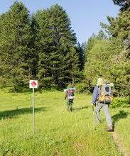 Ο ΕΟΣ Κοζάνης για την συμβουλευτική Επιτροπή Πεζοπορικών – Ορειβατικών Δραστηριοτήτων (ΣΕΠΟΔ) περιοχής ευθύνης Δασαρχείου Κοζάνης