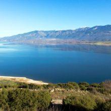 Άρση απόφασης απαγόρευσης αλιείας πέρκας (πρικιά)  στην τεχνητή λίμνη Πολυφύτου