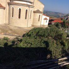 kozan.gr: Πολλές αντιδράσεις στο Τσοτύλι για την κοπή των δέντρων στον προαύλιο χώρο του Ιερού ναού της Αγ. Μαρίνας  (Φωτογραφίες)