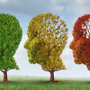 Μήνυμα της Εταιρείας ν. Αλτσχάιμερ και συναφών διαταραχών Κοζάνης ο «Άγιος Νικόλαος» για τον  εορτασμό της Παγκόσμιας ημέρας νόσου Αλτσχάιμερ