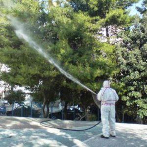 Εργασίες φυτοπροστασίας σε δένδρα στο Δήμο Κοζάνης