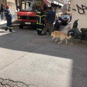 kozan.gr: 92χρονη νεκρή στην οικία της επί της οδού Αθ. Διάκου στην Κοζάνη