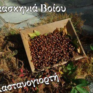 Δαμασκηνιά Βοϊου: Mετά από 20 χρόνια ματαιώνεται η διοργάνωση της Καστανογιορτής (που είχε προγραμματιστεί για τις 25 Οκτωβρίου 2020).