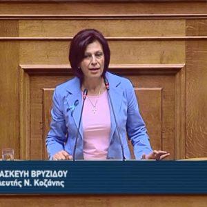 Ομιλία της Βουλευτή Π.Ε. Κοζάνης Π. Βρυζίδου για τη Δημοκρατία, την Ιθαγένεια, την Τ.Α., τη Δημόσια διοίκηση κ.ά. (Βίντεο)