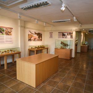 Ριζική ανάπλαση του Κέντρου Παλαιοντολογίας Μηλιάς προωθεί ο Δήμος Γρεβενών μέσω Ανοιχτού Αρχιτεκτονικού Διαγωνισμού