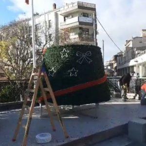 kozan.gr: Άρχισε η προετοιμασία εγκατάστασης και του Χριστουγεννιάτικου δέντρου στην κεντρική πλατεία Κοζάνης – Δηλώσεις της Αντιδημάρχου Πολιτισμού Ε. Κοϋμτζίδου (Βίντεο)