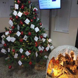 kozan.gr: Ο Ελληνικός Ερυθρός Σταυρός (Κοζάνης) στόλισε σήμερα Πέμπτη 3/12 το δέντρο στο Μαμάτσειο νοσοκομείο Κοζάνης