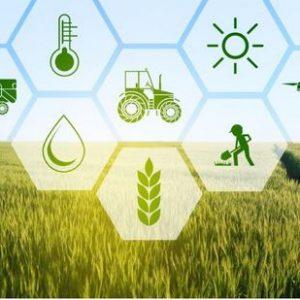 Η Αναπτυξιακή Δυτικής Μακεδονίας – ΑΝΚΟ Α.Ε.διοργανώνει το1ο Διαδικτυακό Εργαστήριο του Έργου SmartRural «SmartRural Entrepreneurship», το οποίο έχει ως αντικείμενο τηνεπιχειρηματικότητα στις αγροτικές περιοχές – Συνεχίζονται οι εγγραφές
