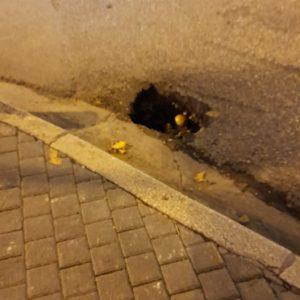 kozan.gr: Σχόλιο αναγνώστη: Παύλου Μελά στην Κοζάνη: Αυτή την τρύπα, την είδε κανείς, για να την κλείσει; (Φωτογραφίες)