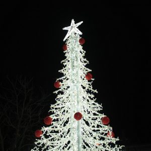 Δήμος Γρεβενών: Άναψε το Χριστουγεννιάτικο Δέντρο της Κεντρικής Πλατείας-Το μήνυμα του Δημάρχου και η Εορταστική Εκδήλωση των Παιδιών (Βίντεο & Φωτογραφίες)