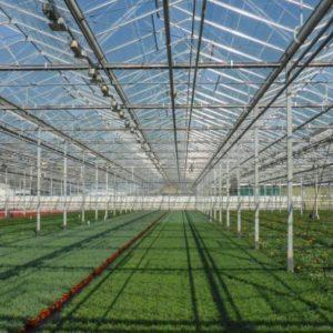 Ανάπτυξη θερμοκηπιακών καλλιεργειών και αξιοποίηση των γεωθερμικών πεδίων της Δυτικής Μακεδονίας