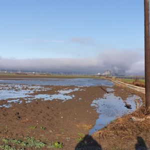 kozan.gr: Φωτογραφίες από τα πλημμυρισμένα χωράφια, λόγω της χθεσινής βροχόπτωσης, στον κάμπο του Δρεπάνου Κοζάνης