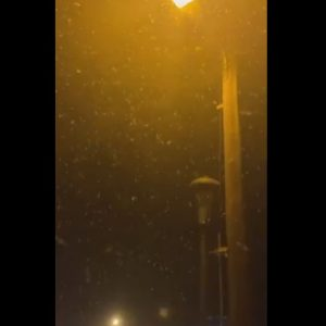 kozan.gr: Ξεκίνησε η χιονόπτωση στη Βλάστη Εορδαίας (Βίντεο)