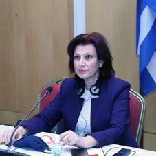 Στα προβλήματα της ανεργίας των γυναικών στην ΠΕ Κοζάνης, με την έντονη για πολλά χρόνια, εξορυκτική δραστηριότητα, αναφέρθηκε η Παρασκευή Βρυζίδου στην τηλεδιάσκεψη του Δικτύου Γυναικών της Κοινοβουλευτικής Συνέλευσης Γαλλοφωνίας