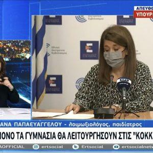 "kozan.gr: Ανοίγουν 1η Φεβρουαρίου Γυμνάσια και Λύκεια – Στις ""κόκκινες"" περιοχές θα ανοίξουν μόνο τα Γυμνάσια, ενώ με τηλεκπαίδευση θα λειτουργήσουν τα Λύκεια"