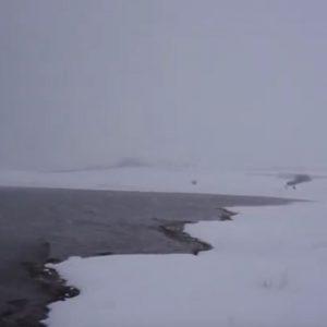 kozan.gr: Σημερινά παραλίμνια πλάνα από τη Λίμνη Πολυφύτου (Βίντεο)