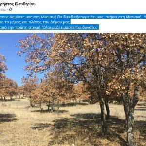 kozan.gr: Στο πλευρό των κατοίκων της Μεσιανής ο Δήμαρχος Σερβίων για το βελανιδόδασος – Η ανάρτησή του στο facebook