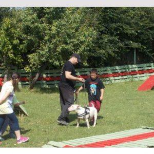 Animal Assisted Therapy: Ένα πρωτότυπο πρόγραμμα θεραπείας με σκύλους στην Κοζάνη