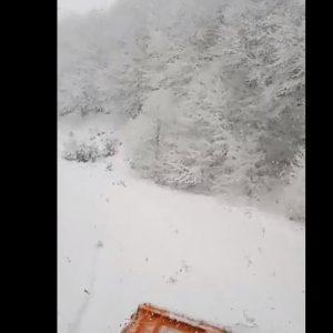 """kozan.gr: 12:30: Aυτό είναι χιόνι – Βίντεο στο δρόμο για τη Βλάστη Εορδαίας στη θέση """"Αρκουδόπετρα"""" (Βίντεο)"""
