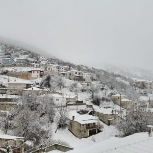 """Πανέμορφες φωτογραφίες από το """"κατάλευκο"""" Μεταξά Σερβίων"""