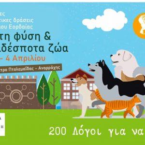 Τριήμερες ανοιξιάτικες δράσεις για τη φύση και τα αδέσποτα ζώα διοργανώνει ο Δήμος Εορδαίας