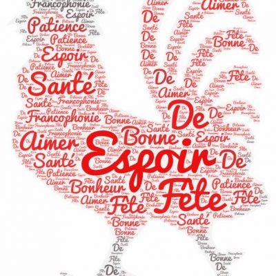 Με μεγάλη επιτυχία ολοκληρώθηκε η διαδικτυακή δράση του Συλλόγου Καθηγητών Γαλλικής γλώσσας Ν. Κοζάνης με τίτλο Passons un message positif