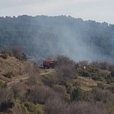 kozan.gr: Φωτιά κοντά στην περιοχή της Αγίας Παρασκευής Μοσχοχωρίου Πλατανορεύματος – Η επιχείρηση κατάσβεσης ολοκληρώθηκε στις 19:30 (Βίντεο & Φωτογραφίες)
