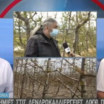 kozan.gr: Σε 45χιλιάδες στρέμματα οπωροφόρων δέντρων αποτιμάται η ζημιά που άφησε πίσω της η κακοκαιρία που χτύπησε την Δυτική Μακεδονία – Σε απόγνωση οι παραγωγοί – H σημερινή ζωντανή σύνδεση της ΕΡΤ3 με την περιοχή του Βελβεντού (Βίντεο)