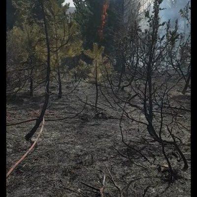 kozan.gr: Σε εξέλιξη είναι πυρκαγιά σε δασική έκταση στην περιοχή Κρύα Βρύση του δήμου Σερβίων Κοζάνης – Επιχειρούν 48 πυροσβέστες με 4 ομάδες πεζοπόρων τμημάτων και 9 οχήματα (Bίντεο)