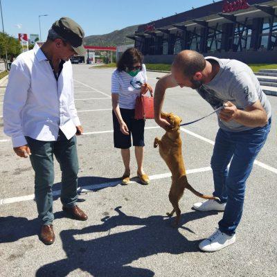 kozan.gr: Από το πηγάδι στα Κομνηνά Εορδαίας, όπου είχε παγιδευτεί, σε νέο σπίτι – Το αίσιο τέλος της περιπέτειας του σκύλου Ράιαν