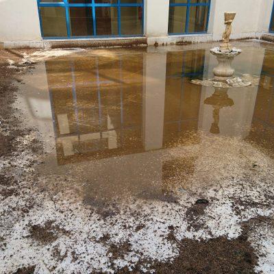 kozan.gr: Απαράδεκτη κατάσταση σε ακάλυπτο χώρο του κτηρίου της Περιφέρειας Δ. Μακεδονίας – Αποκεντρωμένης στην ΖΕΠ – Εδώ και χρόνια, χειμώνα –καλοκαίρι υπάλληλοι των φορέων αυτών βλέπουν στον ακάλυπτο χώρο περιττώματα (κουτσουλιές) τωνπεριστεριών και ψόφια περιστέρια – Έντονη δυσοσμία –  Διαμαρτυρίες των υπαλλήλων αλλά δεν ενδιαφέρεται κανείς