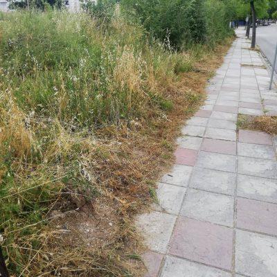 Μετά την ανάδειξη του θέματος από το kozan.gr κόπηκαν τα χόρτα στην οδό Αιανής στην Κοζάνη (Φωτογραφίες)