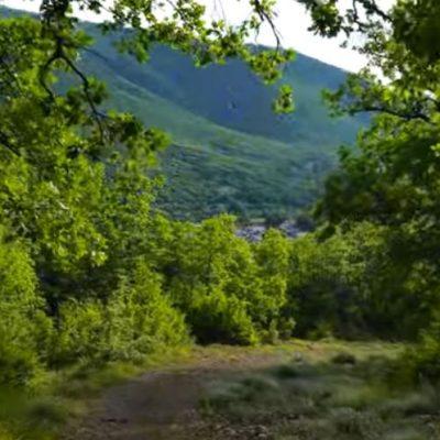 Το Δάσος των Αγίων Αποστόλων στην Μεταμόρφωση Κοζάνης – Λήψη βίντεο 15/6 από το tovoion.com