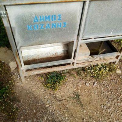 Επιστολή αναγνώστριας στο kozan.gr: Δήμος Κοζάνης, διαχείριση αδέσποτων, ώρα 0