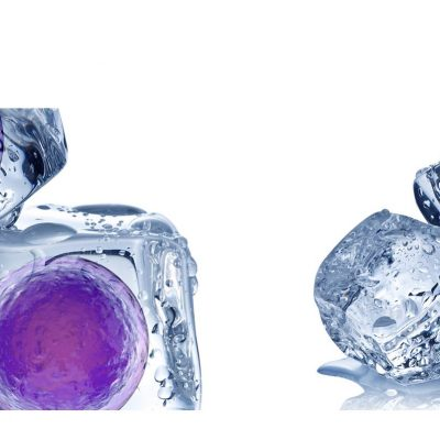 Fertilia by Genesis: Κρυοσυντήρηση ωαρίων και ο χρόνος σταματά