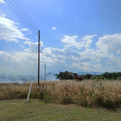 kozan.gr: Μικρής έκτασης φωτιά, που έσβησε γρήγορα η πυροσβεστική, στην περιοχή του οικισμού Νέας Καρδιάς στην Πτολεμαΐδα (Φωτογραφία & Βίντεο)
