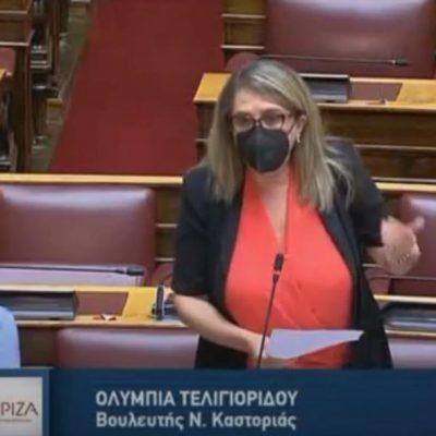 """Τελιγιορίδου – Βέττα: """"Άρνηση της κυβέρνησης να στηρίξει τους γουνεργάτες"""" (Βίντεο)"""