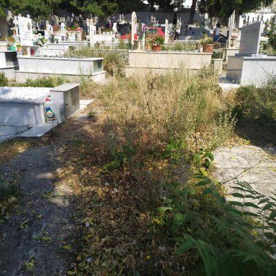 """Καταγγελία αναγνώστη στο kozan.gr: Κοιμητήρια Κοζάνης, μνήματα """"πνιγμένα"""" από χόρτα – Η αρμόδια υπηρεσία του δήμου δεν ενδιαφέρεται;."""