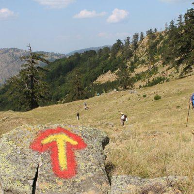 Ο Ε.Ο.Σ. Κοζάνης διοργανώνει το Σαββατοκύριακο 17-18.7.2021 ορειβασία στον Εθνικό δρυμό της Βάλια Κάλντα