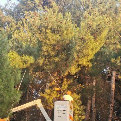 kozan.gr: Ώρα 20:15: Κλαδί δέντρου έπεσε σε καλώδια της ΔΕΗ στο δασάκι δίπλα στην κεντρική λαϊκή αγορά της Κοζάνης προκαλώντας τη διακοπή ρεύματος σε μεγάλο τμήμα της Κοζάνης . Γίνονται εργασίες αποκατάστασης οι οποίες υπολογίζονται ότι θα διαρκέσουν δέκα με είκοσι λεπτά (Βίντεο & Φωτογραφίες)
