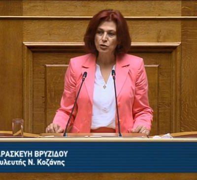 Ομιλία Π. Βρυζίδου στο ν/σ για το έργο του Βόρειου τμήματος του Αυτοκινητόδρομου Κεντρικής Ελλάδος-Ε65 στην Ολομέλεια της Βουλής (Βίντεο)