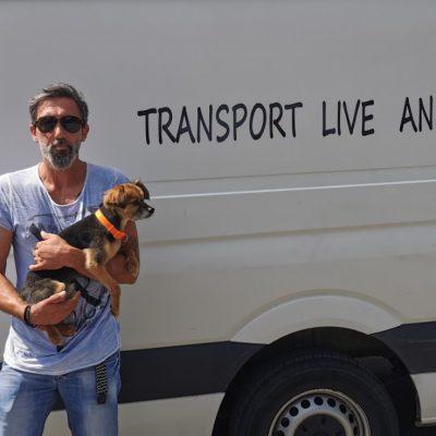 "kozan.gr: Tι είναι το ""Kozani Pet taxi"" (Βίντεο & Φωτογραφίες)"