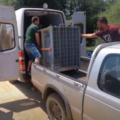 """Φλώρινα – ΑΡΚΤΟΥΡΟΣ: Με μικρά """"αγρίμια"""" γέμισε το Κέντρο Επανένταξης Άγριων Ζώων (Βίντεο)"""